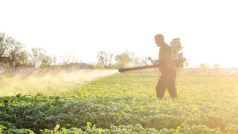 agro-peruano-restringir-las-importaciones-haria-mas-eficiente-la-agroindustria-nacional