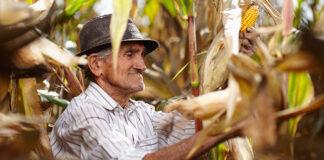 puede-un-pequeno-agricultor-peruano-exportar-sus-productos-y-recibir-ganancias